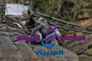 #جانبمن الدمار خلال قصف طيران الاحتلال منزل المواطن