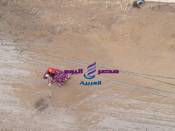 مصرية أصيلة تزيل مياه الأمطار من الطريق العام تيسيرا لحركة المواطنين   الطريق العام
