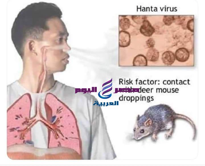 وفاة شخص واصابه 32اخرين بفيروس هانتا بالصين | وفاة شخص
