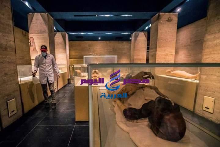 المتحف المصري يواصل التعقيم والتطهير في اليوم العالمي للصحة والسلامة | المتحف المصري