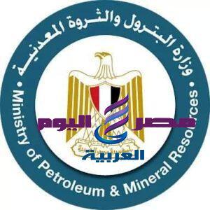 قرار لجنة التسعير التلقائى للمنتجات البترولية وتنفيذ آليات تطبيق التسعير التلقائى