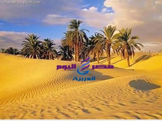 فى ظلال الهدى النبوى ومع عبد الرحمن الداخل ( الجزء الثانى )