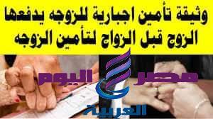 ملحق يرفق بوثيقة الزواج أو إشهاد الطلاق بقانون الأحوال الشخصية المقدم من الحكومة