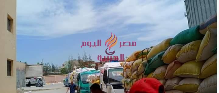 محافظ كفر الشيخ .. توريد 165407 طن و 693 كيلو قمح للصوامع والشون . | محافظ