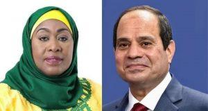 أجرى السيد الرئيس عبد الفتاح السيسي اليوم اتصالًا هاتفيًا مع السيدة سامية حسن، رئيسة جمهورية تنزانيا المتحدة.