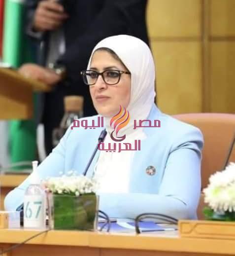 ضبط ١٠٦٣ مخالفة دوائية وكيس دم مجهول المصدر في حملة موسعة في نطاق محافظة الشرقية | ضبط